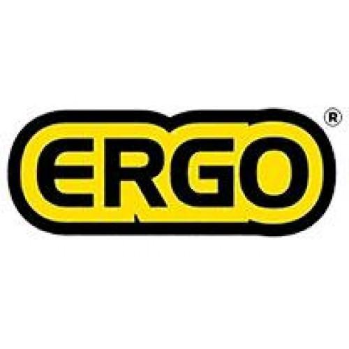 Ergoshoes